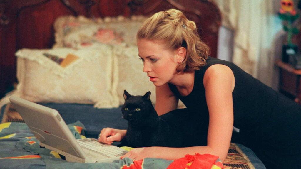 коты в сериалах